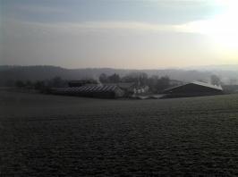 Der Sommerhof_5